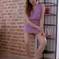 Teenaged amateur Tina reveals her upskirt skivvies after showing her diminutive boobies by herself