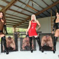 Bossy type Brianna and a two other clothed dominatrixes put male subs away in cages