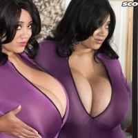 Dark-haired MILF Roxi Crimson letting monster-sized boobies loose from plum jumper