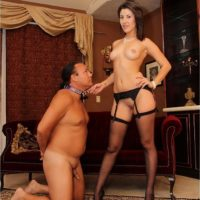 Dark haired gf Missy Daniels puts a collar on her male submissive and stomps him