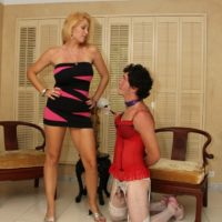 Magnificent blond gf Charlee Haunt forces her crossdressing sissy husband to his knees