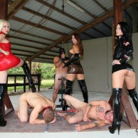 Domina Brianna and a few other cruel gals abuse masculine subs before caging them