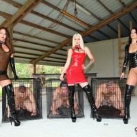 Domme Brianna and several other sadomasochistic nymphs manhandle male slaves before caging them
